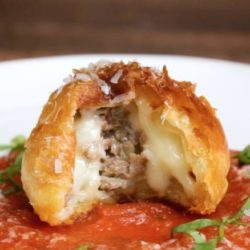 Pizza Chicken Roll
