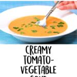 Creamy Tomato-Vegetable Soup