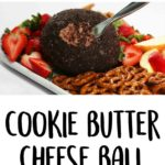 Chocolate Cookie Butter Cheese Ball